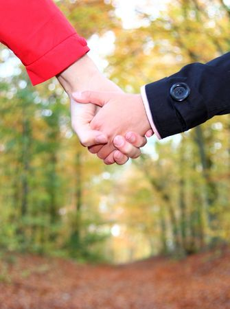 road of love: Holding hands. Young couple holding hands and walking in the autumn forest. Closeup. Stock Photo