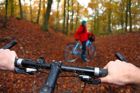 Mountain bike. Biking in the forest, from cyclist perspective. Shallow depth of field, focus on the hands. Stock Photo - 5813065