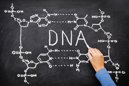 genetica: DNA lavagna di disegno. Mano la struttura chimica del DNA disegno sulla lavagna nera con il gesso. Chemisty e biologia concetto di educazione scientifica.
