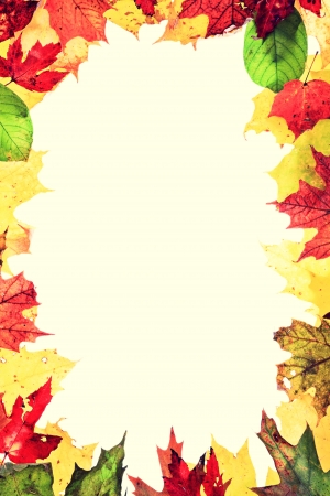 Autumn leaves frame   Real leaves forming a frame  Retro vintage style photo  Stock Photo