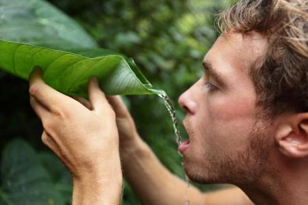 überleben: Survival - Mann trinkt regen Wasser aus Blatt im Regenwald Dschungel