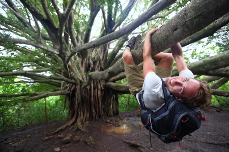 Man hiking climbing giant Hawaiian Banyan tree on the Pipiwai Trail to Waimoku Falls around Haleakala National Park, Hawaii, Maui, USA photo