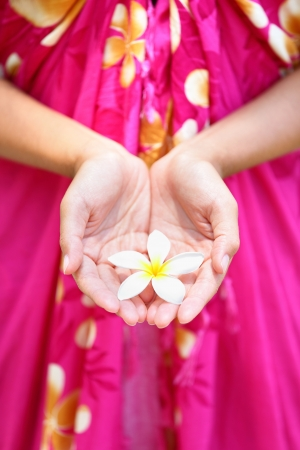 Hawaiian flower in cupped hands of woman wearing sarong  Hawaii concept with typical Plumeria flowers  photo