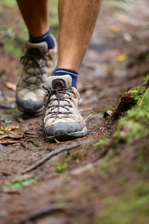 hiking shoes: Hiker - hiking shoes closeup from hike walk  Walking male shoes with copy space  From forest