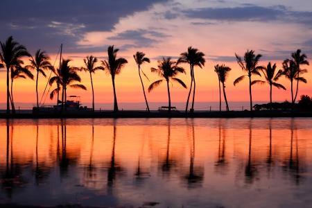 열대 야자수와 파라다이스 해변 일출 또는 일몰. 빅 아일랜드, 하와이, 미국에서 바다 바다 물에서의 여름 여행, 휴일, 휴가 다채로운 컨셉 사진. 스톡 콘텐츠