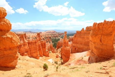 bryce: Bryce Canyon National Park landscape, Utah, United States. Nature scene showing beautiful hoodoos, pinnacles and spires rock formations. including Thors Hammer. Summer.