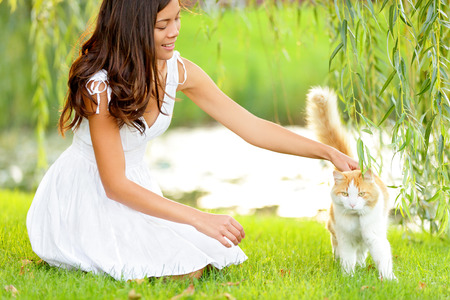 Woman petting cat in summer park. Happy cute girl playing with adorable cats in city park during spring or summer. Beautiful mixed race Asian Caucasian female model smiling happy outdoors. Banco de Imagens