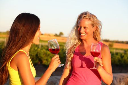 Wine drinking friends toasting drinks at vineyard. Two women cheering with a glass of rose or red wine in summer.