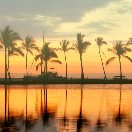 Tropical paradise beach sunset with palm trees. Summer travel holidays vacation getaway colorful concept photo from sea ocean water at Big Island, Hawaii, USA. photo