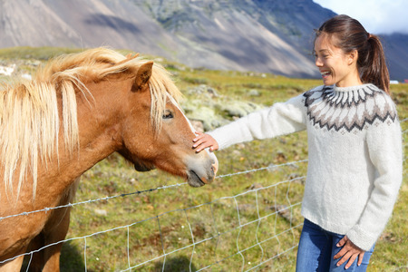 people travelling: Horse - woman petting Icelandic horses in sweater on Iceland. Happy smiling girl going horseback riding. Stock Photo