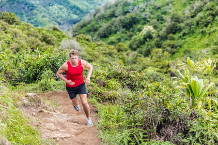 Trail runner running in summer mountain nature landscape on difficult path in mountains in summer wilderness. Athlete jogger working out cardio going up on cross country race uphill outdoors. Stock Photo - 55645907