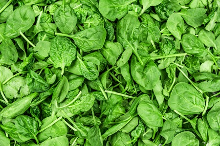 Spinach leaves background green texture. Fresh baby leaf top view for copy space.