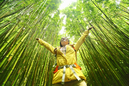 Bamboo forest nature woman environment freedom with open arms in success. Environmental eco friendly sustainability concept. Hiker hiking on Pipiwai Trail on famous road to hana travel, Maui, Hawaii.