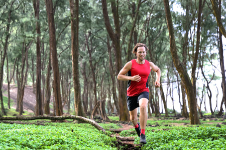 Trail runner man athlete running through forest nature on path sprinting jumping over wood. Imagens