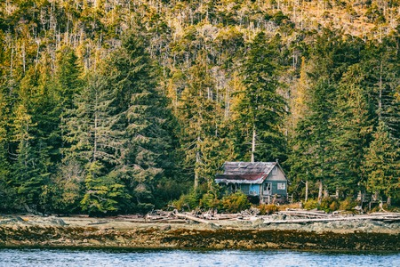 Abandoned house in the forest wilderness - Alaska landscape background. Stok Fotoğraf