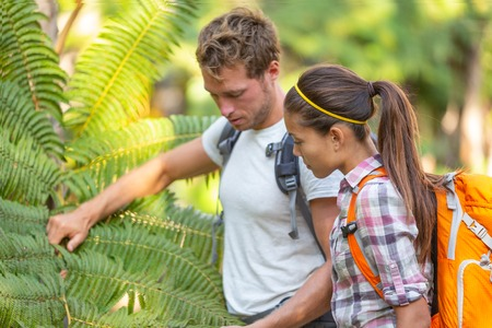Nature guide biologist naturalist botanist teacher teaching to student about plants and biology. Interpretive walk in rain forest, hiking people studying with backpacks. Stockfoto