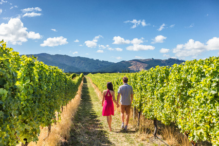 Vineyard couple tourists New Zealand travel visiting Marlborough region winery walking amongst grapevines. People on holiday wine tasting experience in summer valley landscape. Фото со стока