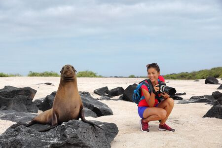 Animal wildlife nature photographer tourist on Galapagos looking at Galapagos Sea Lion taking photos on Galapagos cruise ship adventure travel holidays vacation, Espanola Island, Ecuador South America