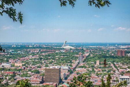 Montreal city summer view of Stadium from top of Mount Royal, neighborhood background. Mobile picture taking with phone. Фото со стока