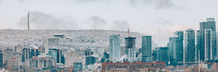 Montreal downtown skyline in winter banner. Panoramic of canadian city with frosted Mount Royal in the background. Construction of condo towers. 免版税图像