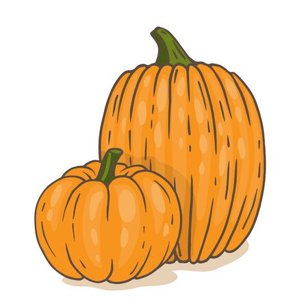 Cartoon orange pumpkins isolated
