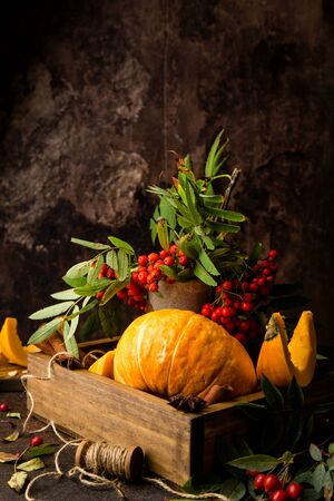 beautiful autumn still life with whole pumpkin and slices in wooden basket with bouquet of rowan branches, dog rose branches, spool of thread on concrete background opposite brown wall 写真素材