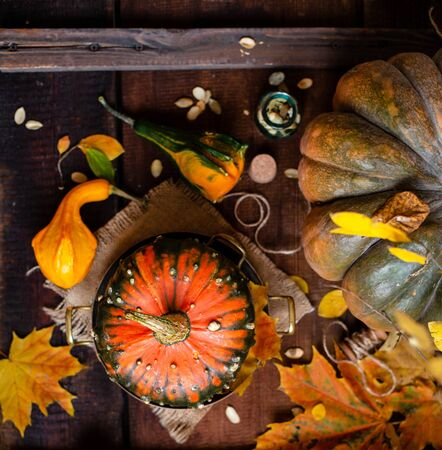 autumn still life with pumpkins and fall maple leaves on brown rustic table with basket of assorted pumpkins, spices, bottles, seeds, top view, autumn card