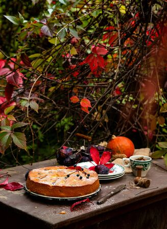 tasty homemade plum cake on vintage plate on brown rustic table with plates, cup, basket with plums, spoons, knife, pumpkin in beautiful autumn garden with branches of grape leaves, selective focus Stock fotó