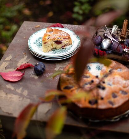 tasty homemade plum cake with slice on vintage plates on brown rustic table with basket of plums, spoons in beautiful autumn garden with branches of grape leaves, selective focus