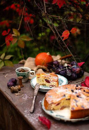 tasty homemade plum cake and slice on vintage plates on brown rustic table with cup, basket with plums, spoons, knife, pumpkin in beautiful autumn garden with branches of grape leaves, selective focus Stock fotó