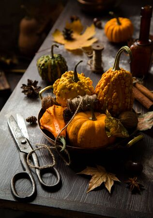 autumn still life with assorted pumpkins in copper plate with spool of thread on rustic table wit autumn leaves, old scissors, table decoration, thanksgiving, selective focus, dark food photography