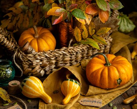 beautiful autumn dark still life photography with assorted colorful small pumpkins on rustic wooden table in wicker straw basket, vase with fall leaves bouquet and orange napkin Stock Photo