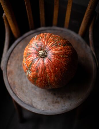 minimalistic food photography with one orange pumpkin stands on old brown chair, thanksgiving and harvesting dark photography