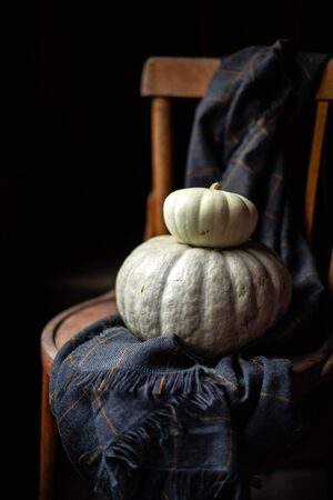beautiful autumnal still life on dark photography with two grey pumpkins on vintage chair with checkered plaid