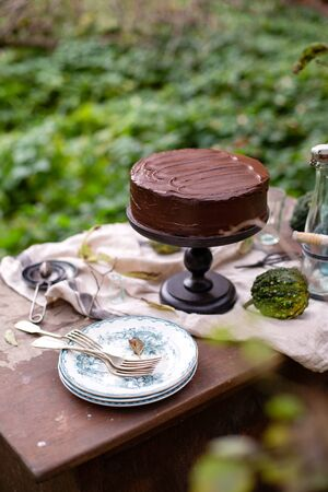 beautiful outdoor still life in autumn garden with whole cake on wooden cake stand with chocolate cream stands on rustic wooden table with grey napkin, vintage bottles, plates and glasses 写真素材