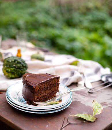 beautiful outdoor still life in autumn garden with tasty slice of chocolate cake on vintage plates stands on rustic wooden table with grey napkin and pumpkins, selective focus 写真素材