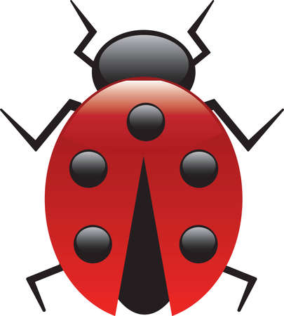This is a vector illustration of a Lucky Lady Bug.
