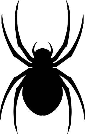 Een illustratie van een klassieke iconische spin, de zwarte weduwe.