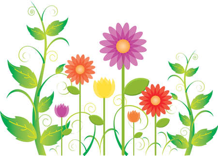 A springtime garden blooming full of leaves, vines and flowers such as daisies and tulips.  Illustration