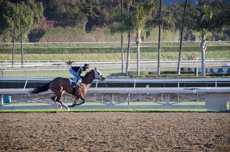 admitted: Arcadia, California, USA - December 29, 2011 - Behind the scenes, morning work outs with the race horses before the park opens and the spectators are admitted.