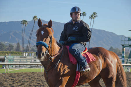 behind the scenes: Arcadia, California, USA - December 29, 2011 - Behind the scenes, morning work outs with the race horses before the park opens and the spectators are admitted. Editorial