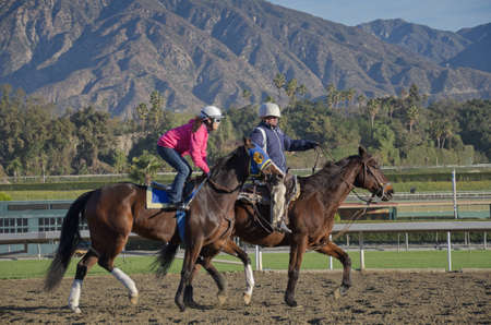 admitted: Arcadia, California, USA - December 29, 2011 - Behind the scenes, morning work outs with the race horses before the park opens and the spectators are admitted. Editorial