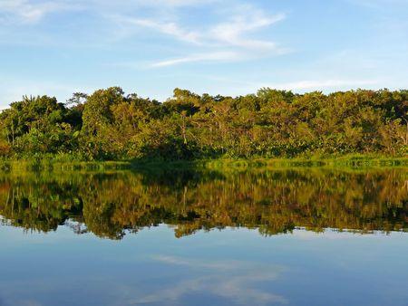 A calm, serene lake in the Amazon rainforest, Ecuador.