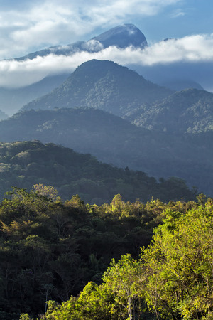Mountains and landscape of the wetlands of the Atlantic forest near Rio de Janeiro, Brazil