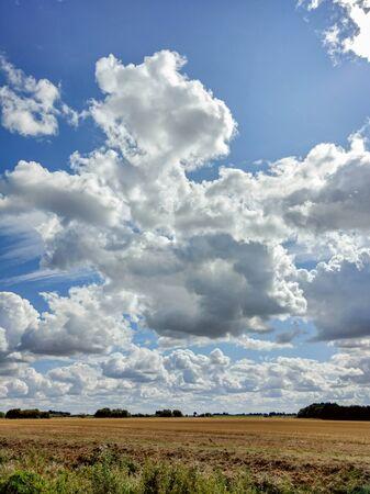 Fenland scene and agricultural landscape in Farcet Fen, Cambridgeshire, England Reklamní fotografie