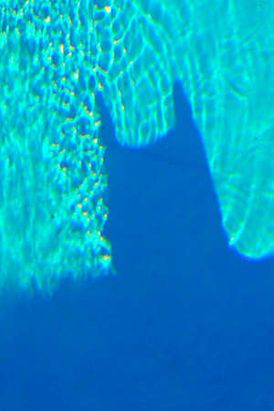 The shadow of the bat man watching over the swimming pool of a rich Gotham-City figure
