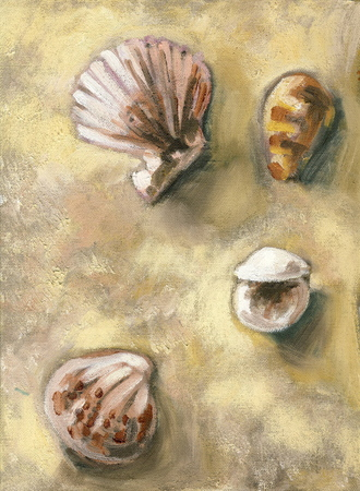 An original oil painting of shells found at the beach.