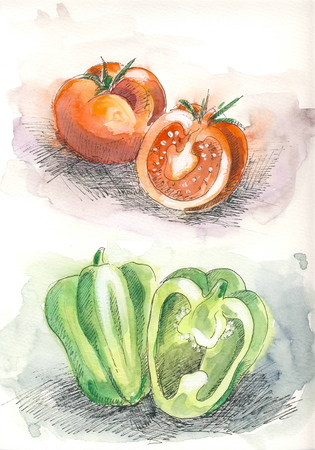veggies: Tomato and pepper in color - watercolor and ink illustration Stock Photo