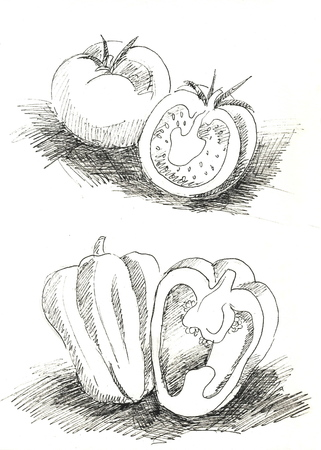 fruitful: Tomato and pepper black and white - pen and ink illustration