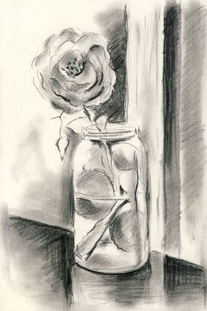 single rose: A single rose in a vase - Charcoal drawing